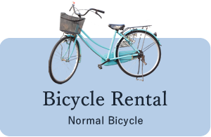 Bicycle rental:bicycle