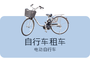 Bicycle rental:Electric assisted bicycle