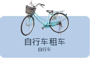 Bicycle rental:bicycle