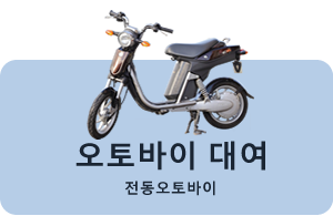 Bicycle rental:Electric Motorcycle